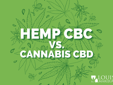 What's the Difference Between Hemp CBD and Cannabis CBD?