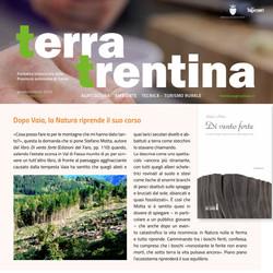 TerraTrentina_01-2020, pag. 81