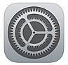 access log ipad sett