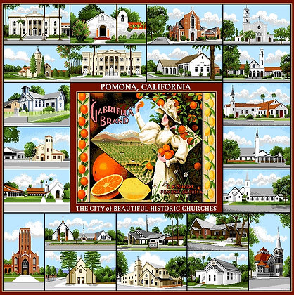 Pomona Historic Churches Throw