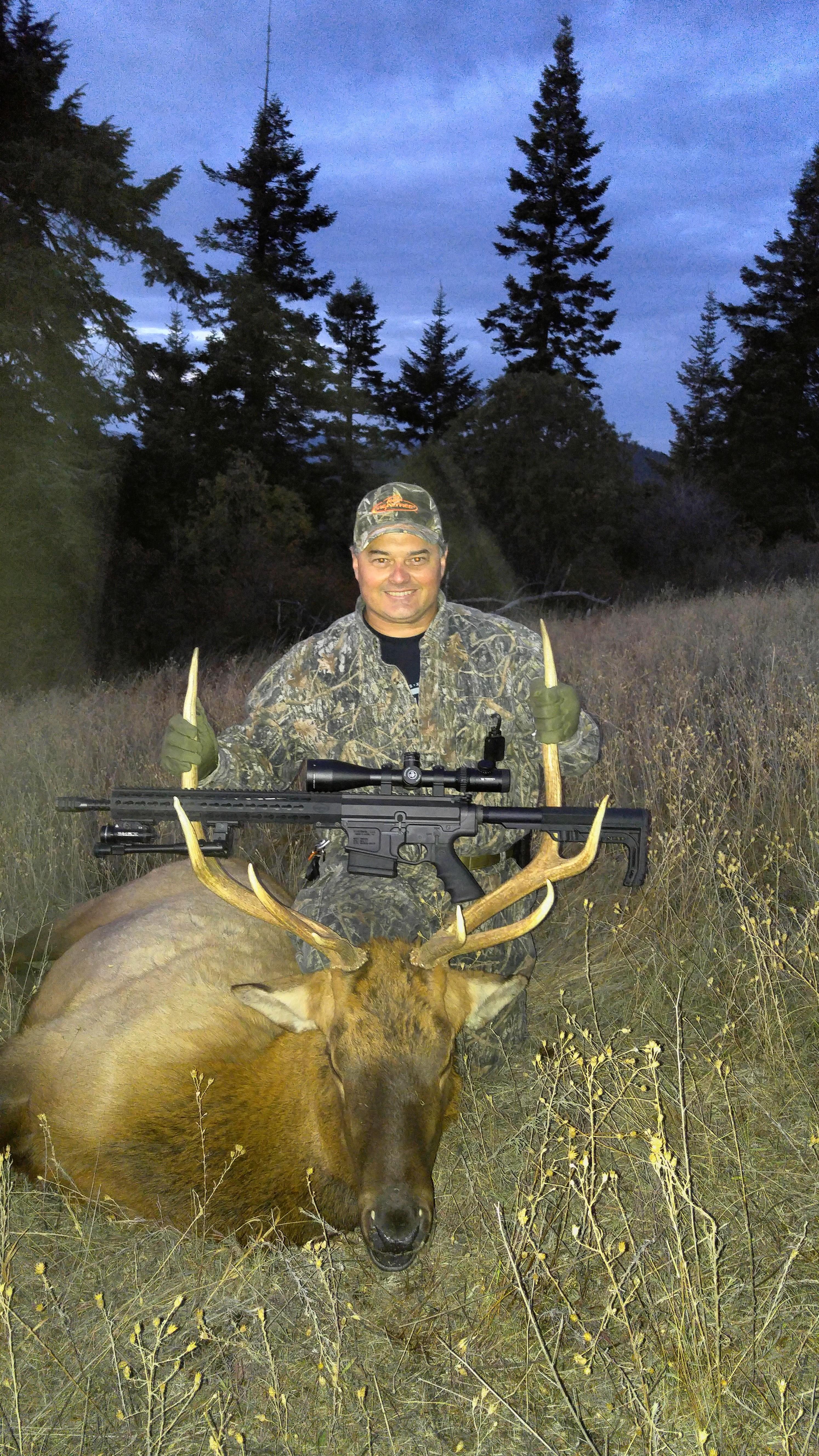 G Davis Elk
