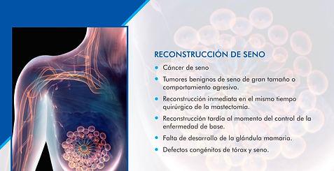 RECONSTRUCCIÓN DE SENO.jpg