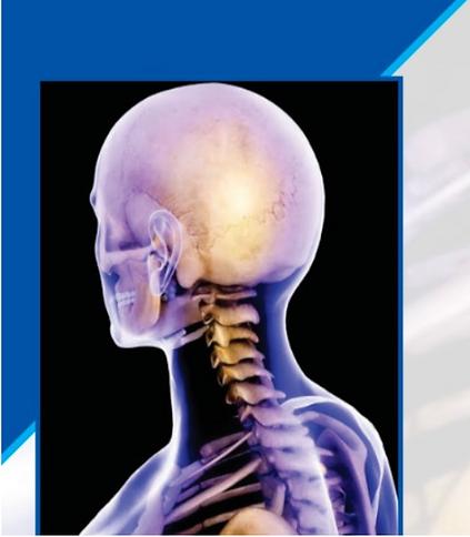 reconstruction cabeza y cuello.png