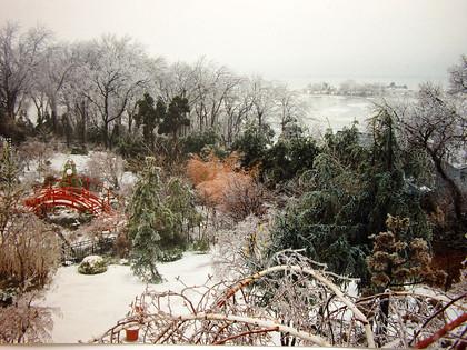 冬雪  懷鄉園