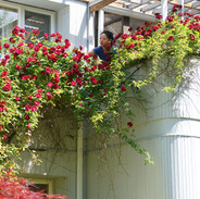 女兒探看花叢裡的鳥巢