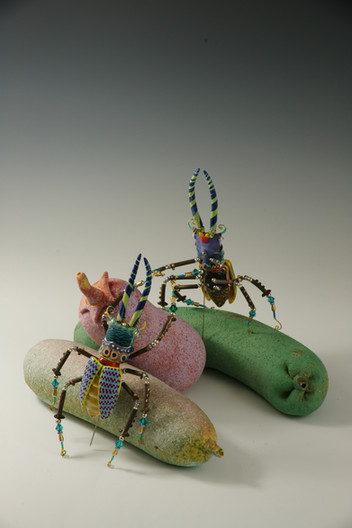 爛瓜上打架的甲蟲