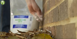 食品等級の珪藻土の使い方