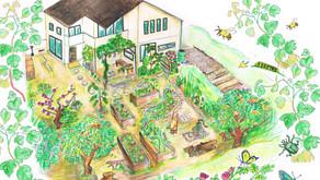 珪藻土のオープンハウス開催