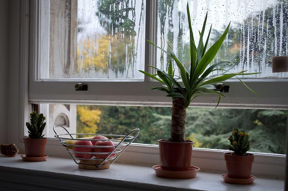 いいかべ珪藻土ブログ_部屋の換気方法