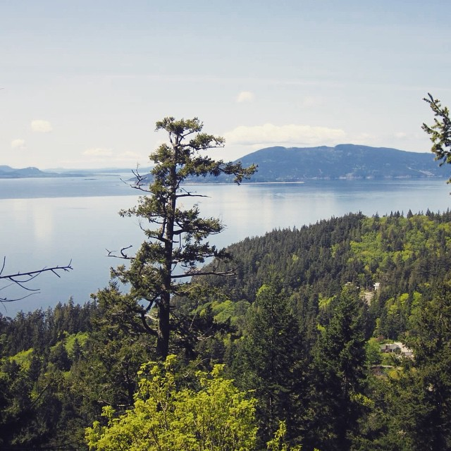 View of Whatcom Lake