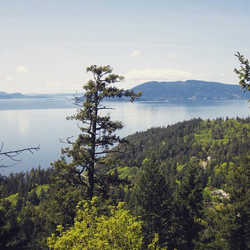 View of Whatcom Lake