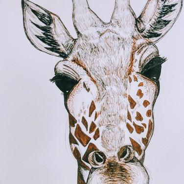 Sweet Giraff