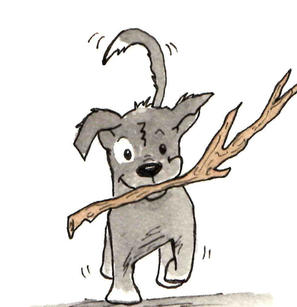 Pup and his stick