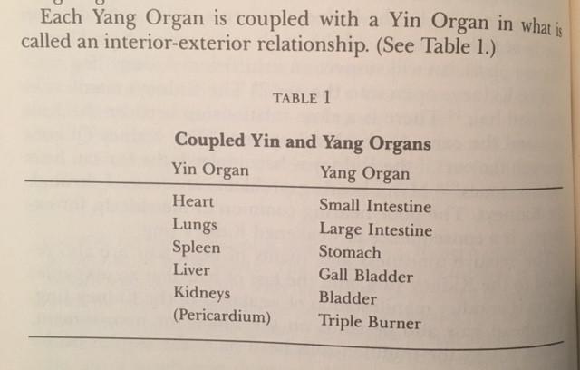 Yin & Yang Organ pairs