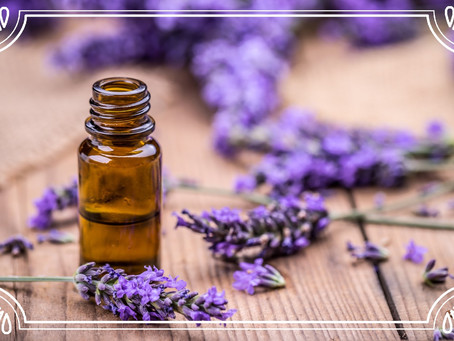 Essential Oils for Winter Health