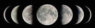 Lunar Consult Pkg: 4/month