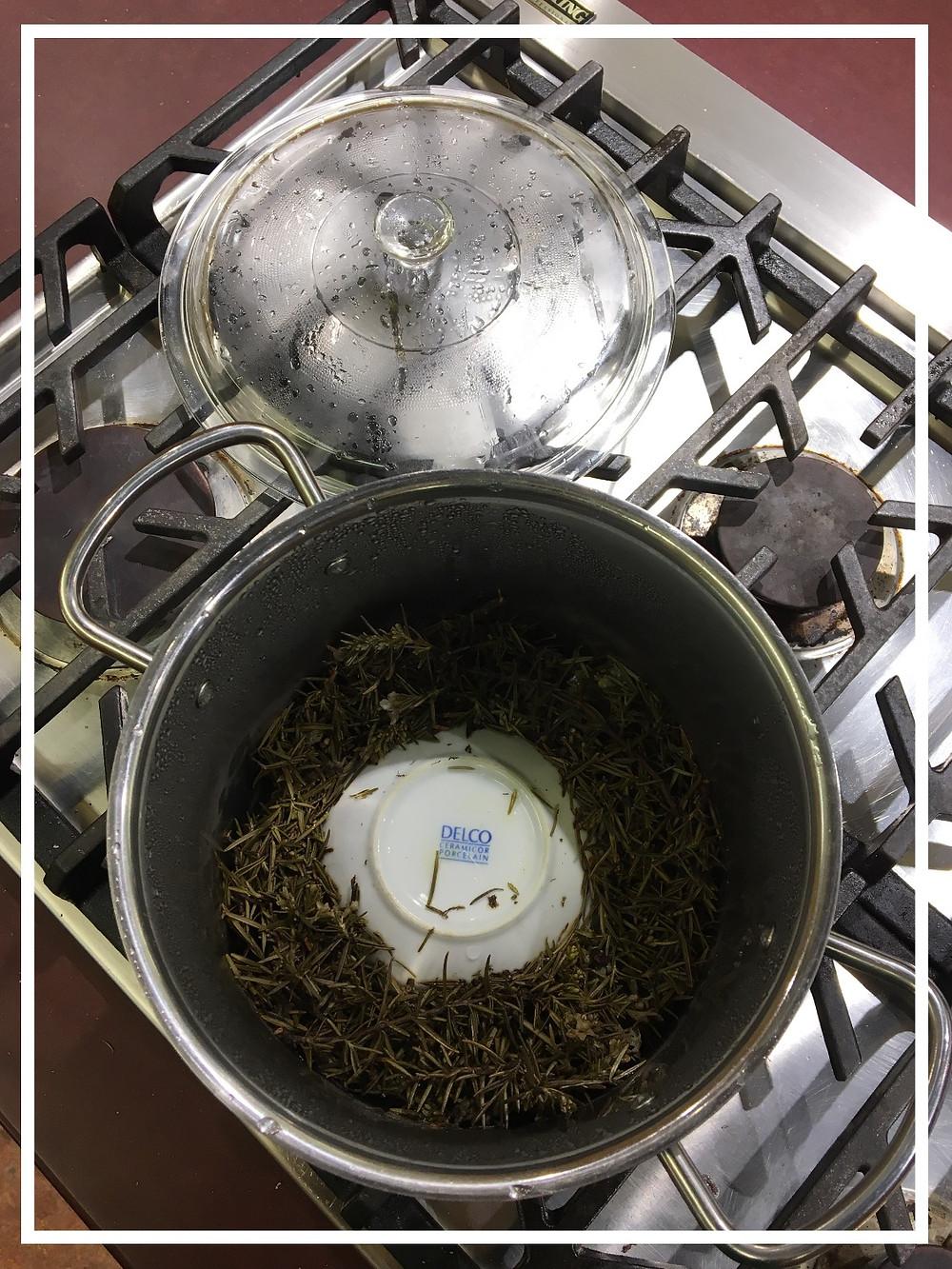 Making a Hydrosol of Rosemary
