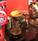 ハンドドリップコーヒーセミナー