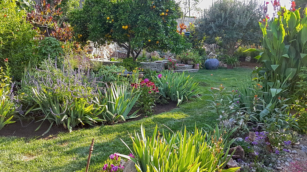 John Beaudry's garden will be one stop on the San Diego Horticultural Society's 2019 Spring Garden Tour in La Mesa.