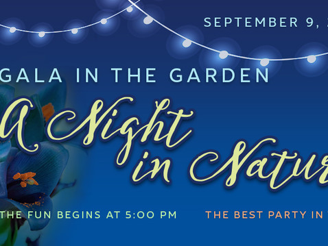 NEWS: SDBG's 18th Annual Gala in the Garden