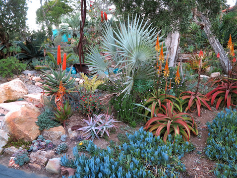 NEWS: Open Garden at the Home of Patrick Anderson