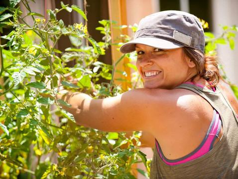 GROW WITH ABUNDANCE: Tomatoes 102