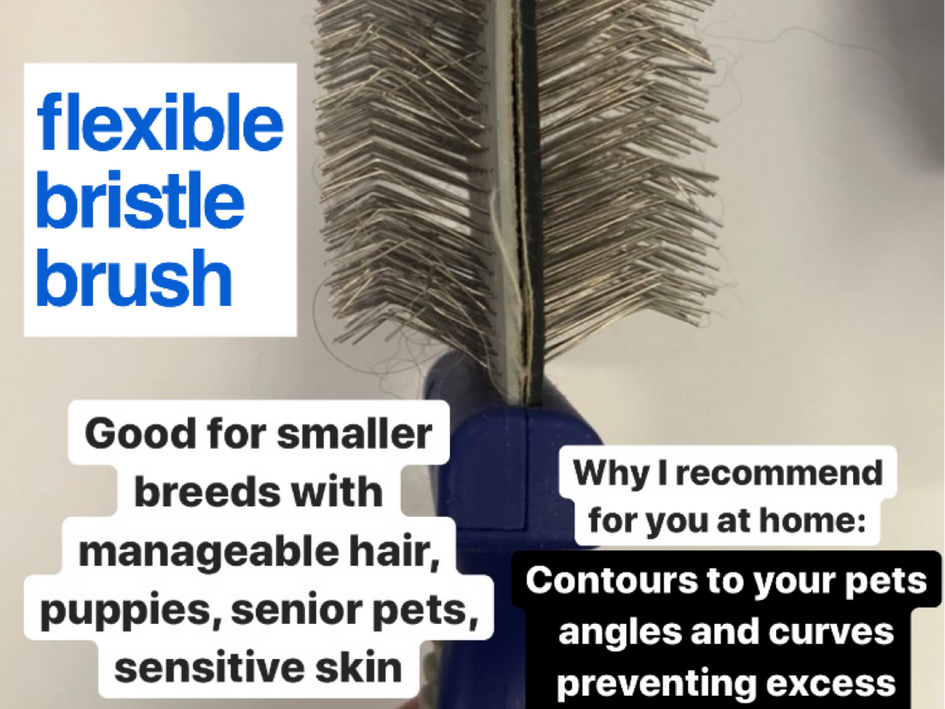 Brush & it's use for you at home