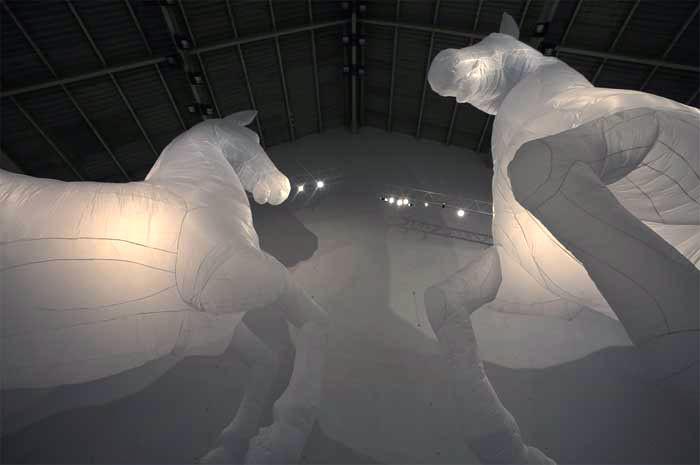71_horses-mumbai-2web.jpg