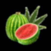watermelon hemp.png