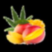 mango hemp.png