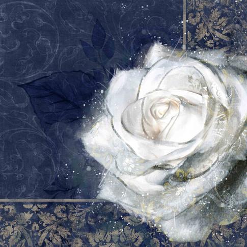 tova rosa elegante 4low.jpg