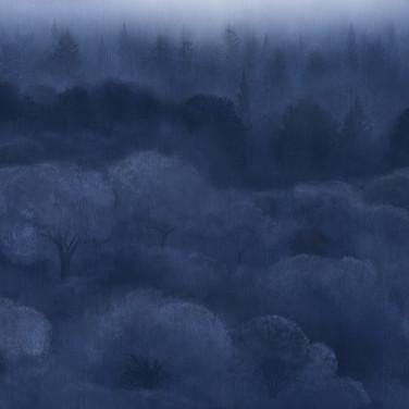 nebbia blu modulo continuo.jpg