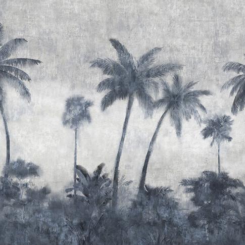 california.palme.jpg