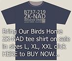tee shirt graphic2.jpg