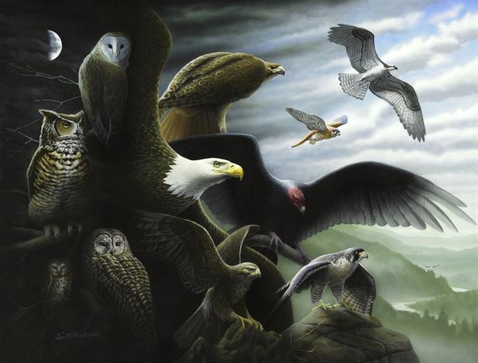REGI-raptors.jpg
