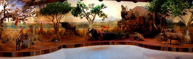 africanpanorama-mural-museum-exhibit.jpg