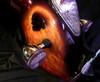 fender-skulls1.jpg