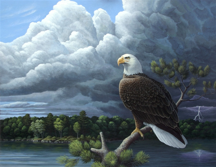 Eagle-Storm.jpg