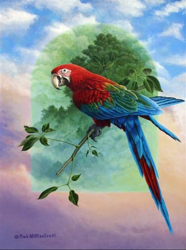 Green-Wing-Macaw.jpg