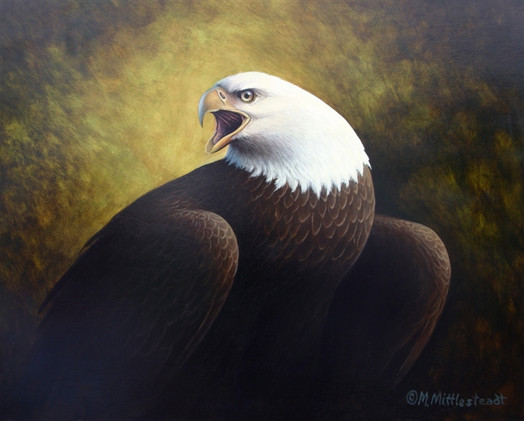 Eagle-Portrait.jpg