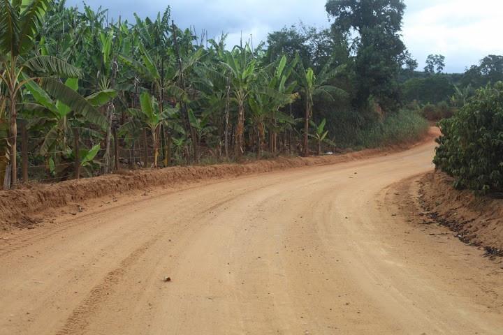Estrada sem pavimentação dificulta escoamento da produção agrícola