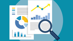Majeski disponibiliza análises de dados do Portal da Transparência do Governo