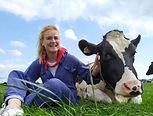 Een foto van koe knuffelen bij boerderijrecreatie