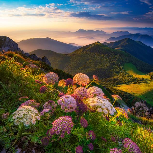 Farebný raj Malej fatry