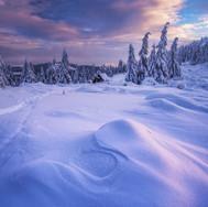 Štruktúry zimy