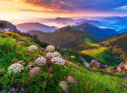 Farebný raj na Veľkom Rozsutci