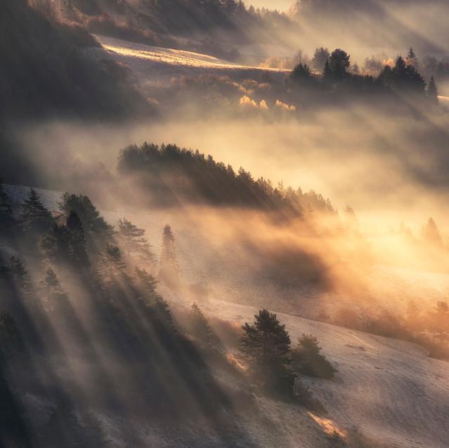 Krajina vo svetle