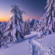 Uličky zimy