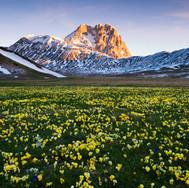 Na Alpskej lúke