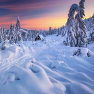 Cestičky zimy